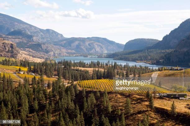 skaha lake okanagan falls - okanagan valley stock pictures, royalty-free photos & images