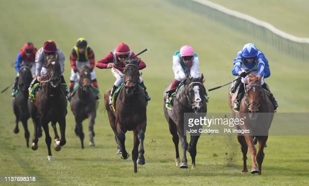 Skardu ridden by James Doyle wins the bet365 Craven Stakes during day two of the bet365 Craven Meeting at Newmarket Racecourse.