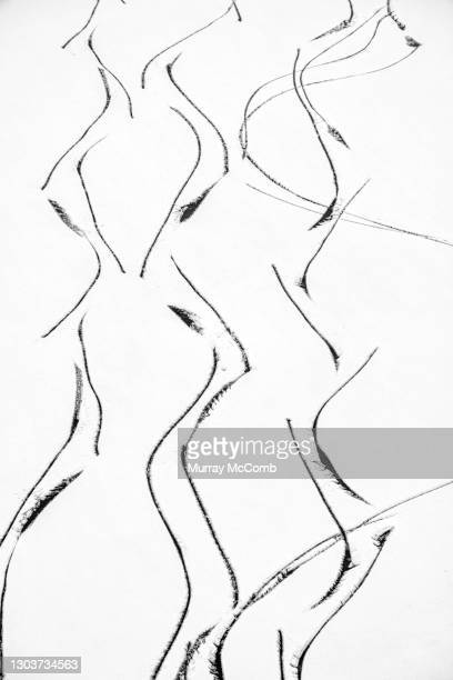 skate tracks creating abstract black and white art - murray mccomb stock pictures, royalty-free photos & images