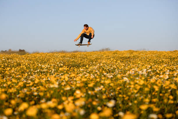 Skateboarder Flies Through A Field Of Flowers