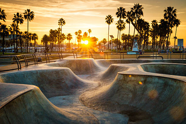 Skateboarding Paradise Wall Art