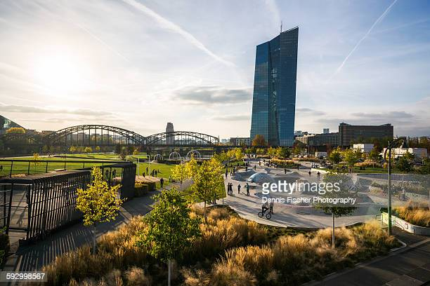skatepark and skyline frankfurt - european central bank stock pictures, royalty-free photos & images