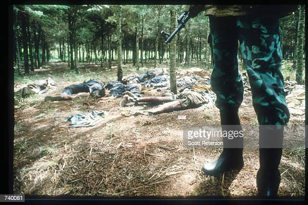 Skeletal remains strewn on the grounds of the Catholic mission May 5 1994 in Rukara Rwanda Hundreds of Tutsis were killed at the Rukara Catholic...
