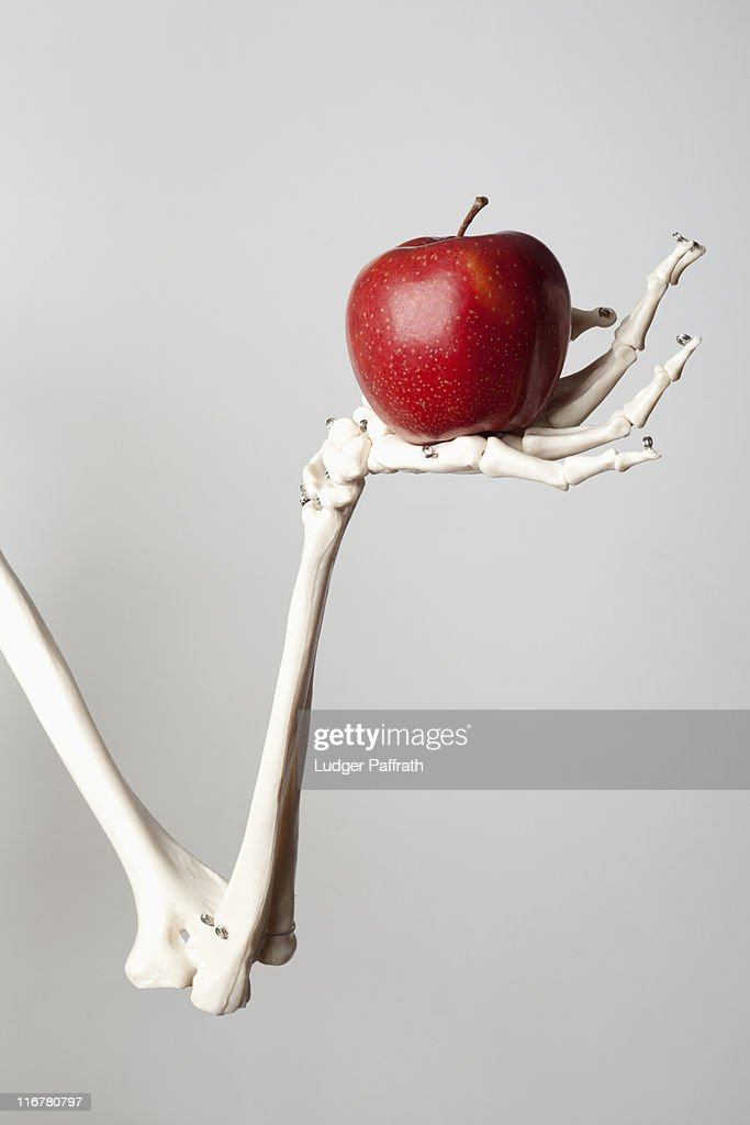 A skeleton arm and hand holding a red apple : Stock Photo