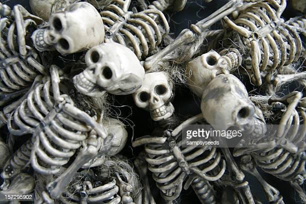 Esqueleto de fundo