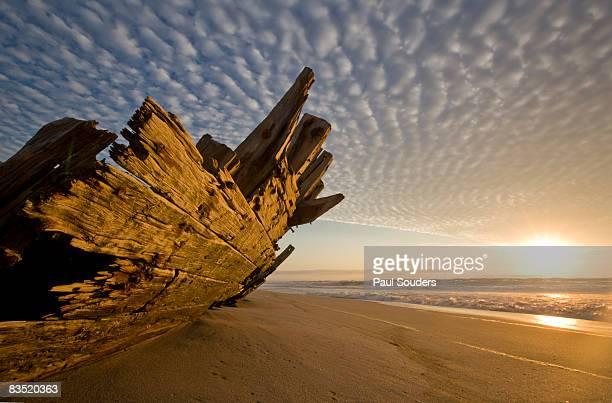 skeleton coast shipwreck, namibia - namibia fotografías e imágenes de stock