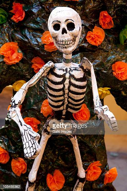 skeleton decoration for day of the dead (dias de los muertos) celebration in november, oaxaca, mexico - funny skeleton stock photos and pictures