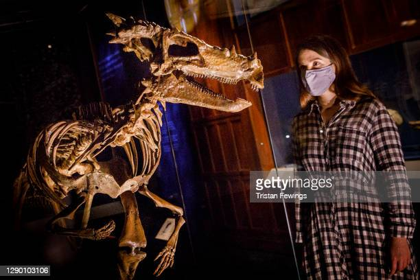 """Skeleton goes on view during the """"Fantastic Beasts: The Wonder of Nature"""" photo call at Natural History Museum on December 08, 2020 in London,..."""
