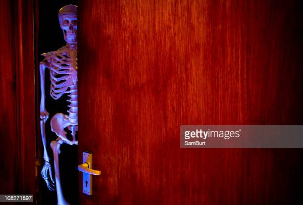skeleton in the cupboard - funny skeleton stock photos and pictures