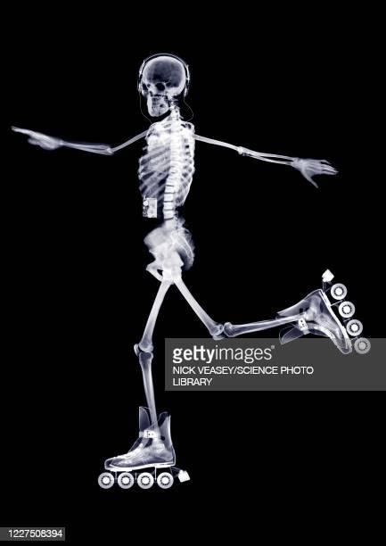 skeleton in-line skating, x-ray - miembro parte del cuerpo fotografías e imágenes de stock