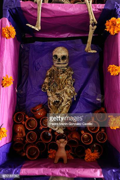 A skeleton lies on a tomb during the Day of the Dead celebration known in spanish as Dia de los Muertos on November 01 2016 in Xochimilco Mexico The...