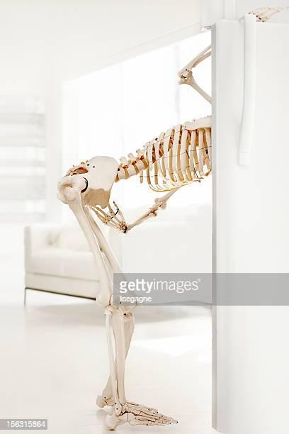 Skeleton looking inside fridge