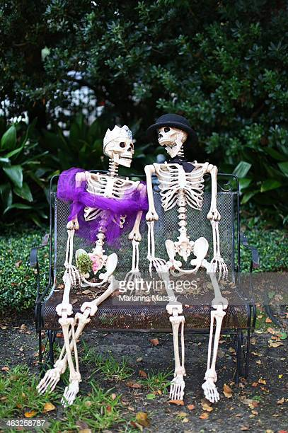 skeleton man and woman at halloween - human skeleton stock photos and pictures