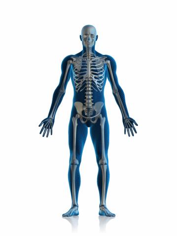 Skeleton man 172388424