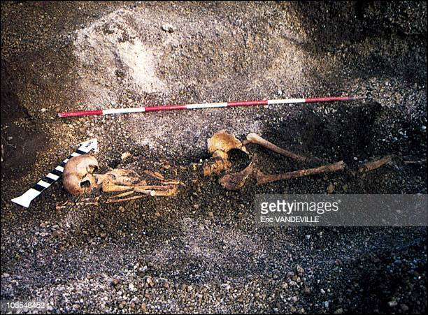 Skeleton of a woman who died during the eruption discovered near Nola in Italy in February 2002