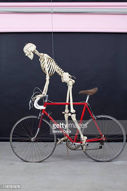 skeleton on a bike. - funny skeleton stock photos and pictures