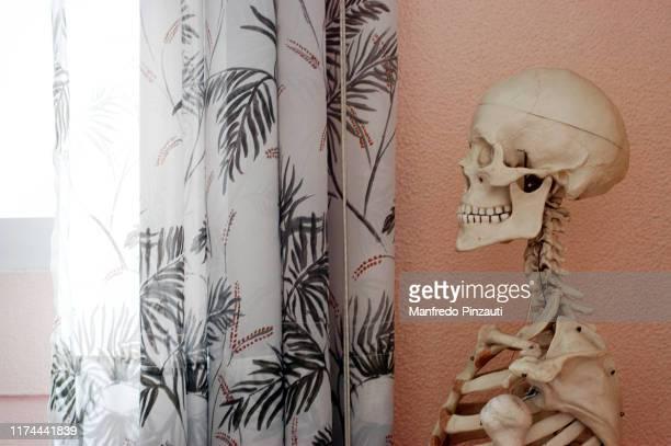 skeleton . - mort concepts photos et images de collection