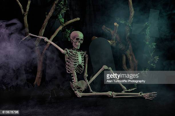 skeleton resting - funny skeleton stock photos and pictures