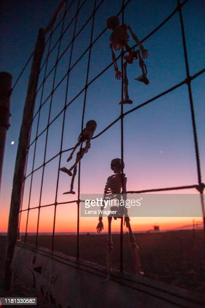 skeleton silhouettes in net against beach sunset - lena spoof stock pictures, royalty-free photos & images