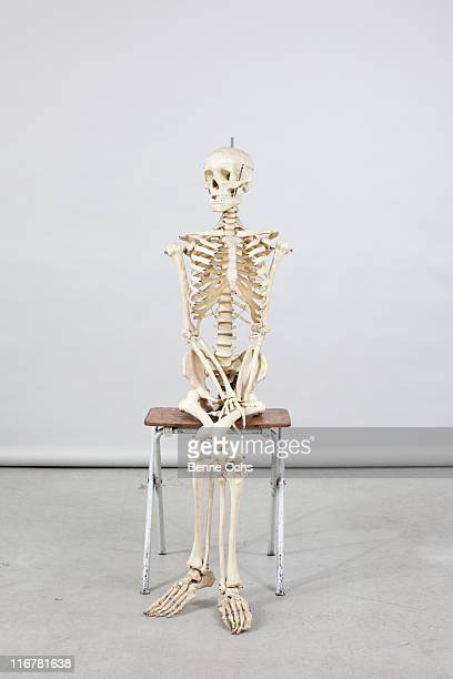 skeleton sitting comfortably - human skeleton stock photos and pictures