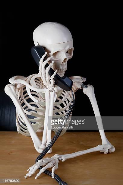 a skeleton using a landline phone - esqueleto humano fotografías e imágenes de stock