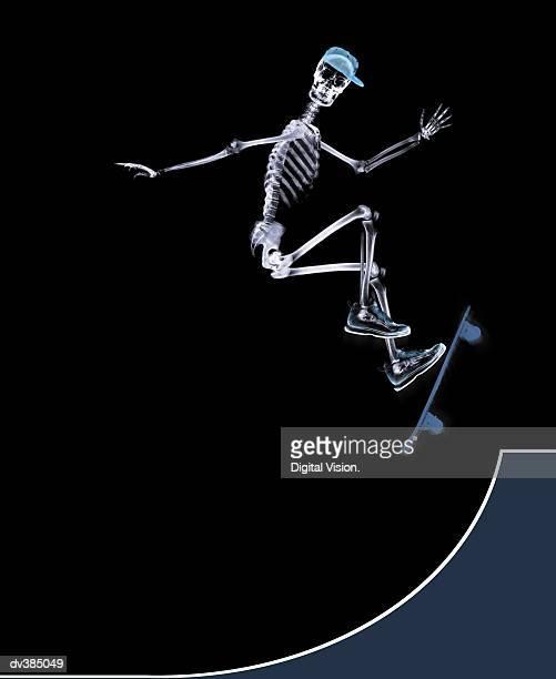 skeleton using skateboard - esqueleto humano fotografías e imágenes de stock