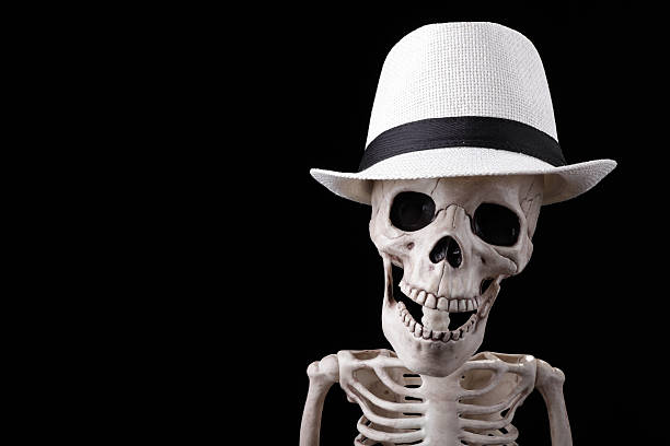 Free Human Skeleton Images Pictures And Royalty Free Stock Photos