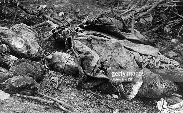 Skeletonized corpse of a dead soldier on the battlefield outside of Verdun 1916