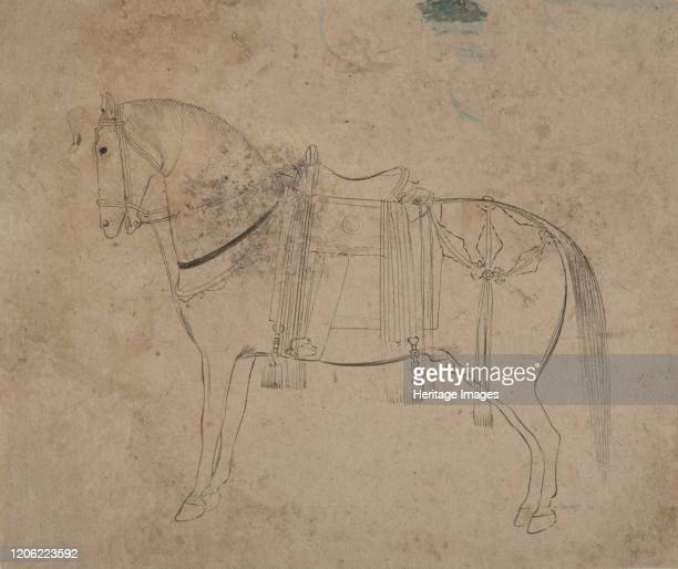Sketch of a Horse, late 18th century. Artist Unknown.