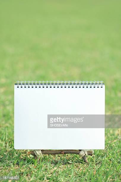 Sketchbook on lawn