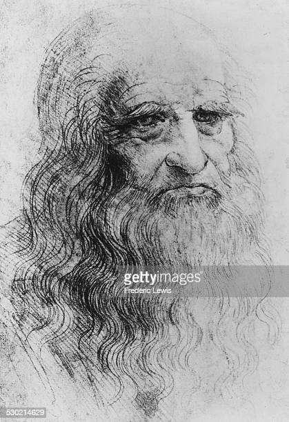 Sketched self portrait of artist Leonardo da Vinci from an original red chalk drawing circa 1500