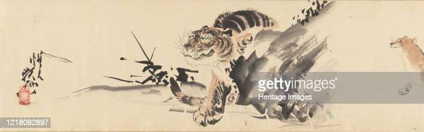 263 Tiger Drawing Photos And Premium High Res Pictures Getty Images