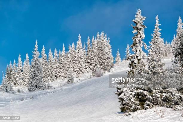 Ski slope in Transylvania