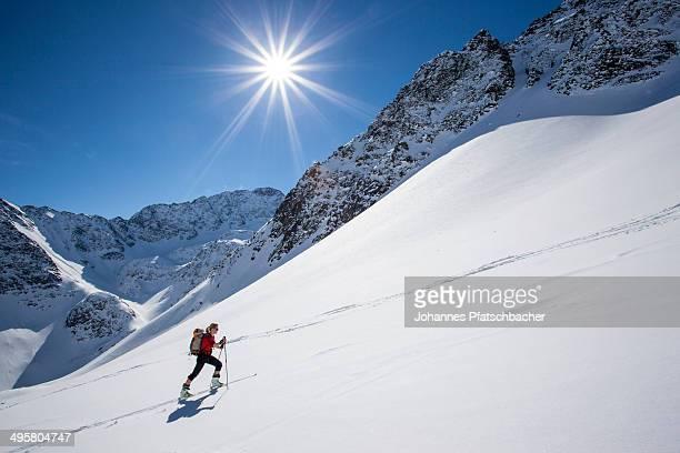 Ski tour walker to the Steintalspitzen summits, Stubai Alps, Kuhtai, Tyrol, Austria
