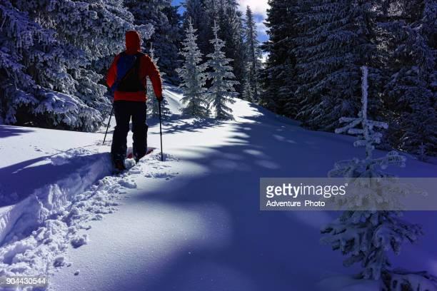 esquí de travesía en travesía de nieve fresca - vail colorado fotografías e imágenes de stock