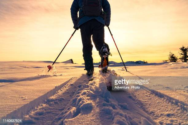 ski touring mountain sunset view - telemark stock pictures, royalty-free photos & images