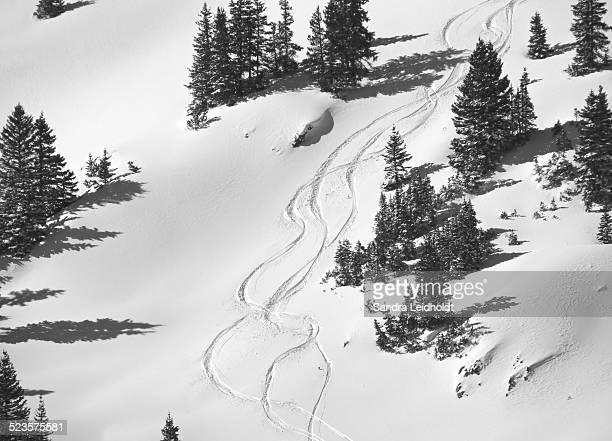 Ski tracks on Loveland Pass