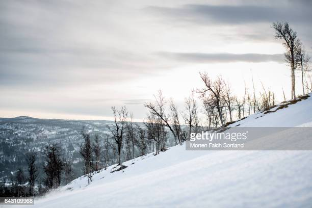 ski trail - winter sports event stock pictures, royalty-free photos & images