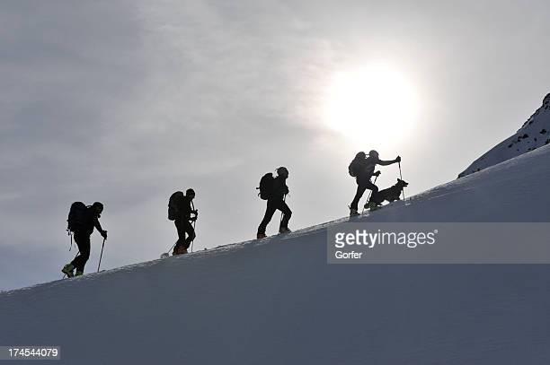 ski walking group with dog