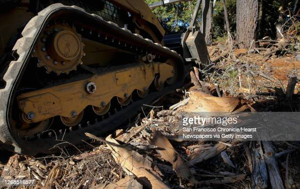 A skid steer machine is being used to turn heavy brush and small trees into mulch as the Marin Municipal Water District reduces the wildland fire...