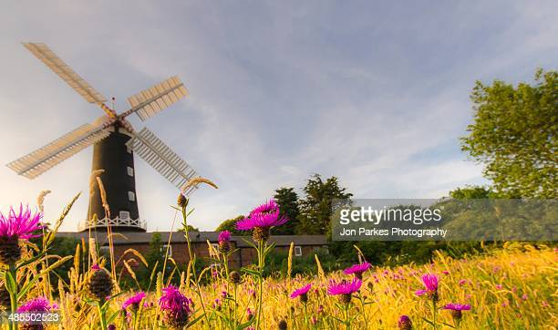skidby mill - traditional windmill stock photos and pictures