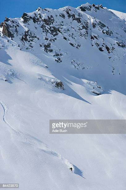 skier carving through powder snow - downhill skiing stock pictures, royalty-free photos & images