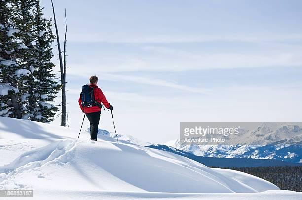 Skier Enjoying Mountain Vista