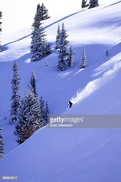 Skier in Aspen, Colorado.
