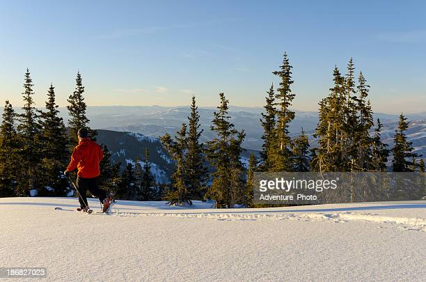 Skier in Pristine Mountains with Fresh Snow