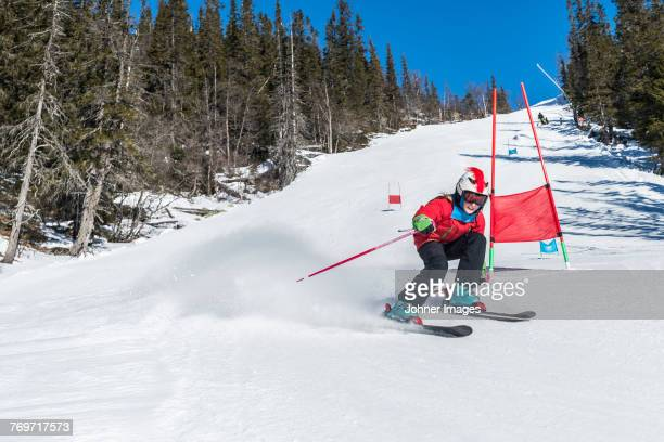 skier in the ski slope