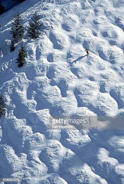 Skier on a Mogul Run