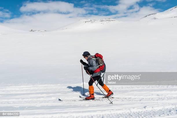 Skier on Hardangervidda
