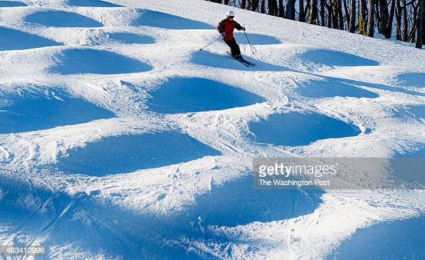 A skier on 'snowpark's' moguls at Whitetail Resort in Mercerburg PA on February 6 2015 No snow No problem The resort is outfitted with a healthy...