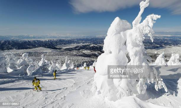 A skier slides between ice monsters or deposits of ice and snow on pine trees at Zao hot spring and ski resort in Yamagata northeastern Japan on Feb...